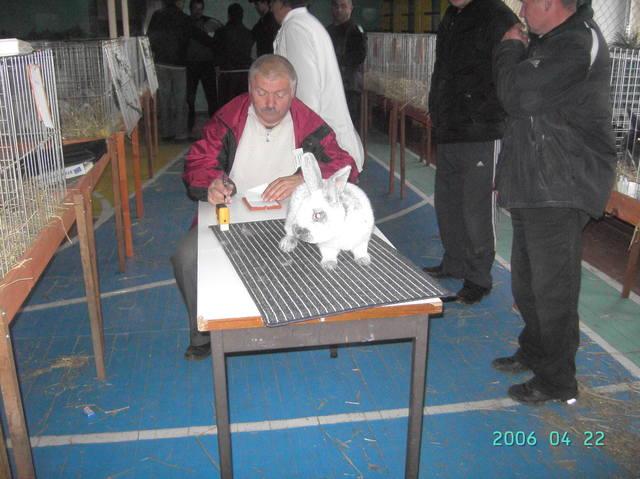 выставка в Ужгороде. - Страница 2 1436001_m
