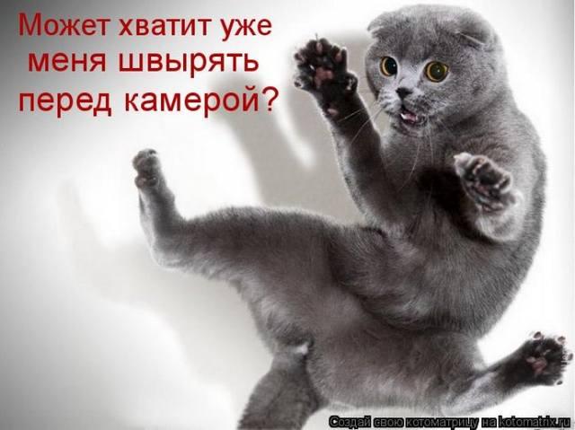 http://images.vfl.ru/ii/1356938045/a8d30297/1486255_m.jpg