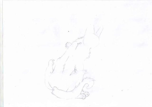 Рисуем Когтя из книги «Коты-Воители»