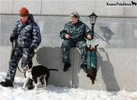 http://images.vfl.ru/ii/1359149657/d494cada/1628403_s.jpg