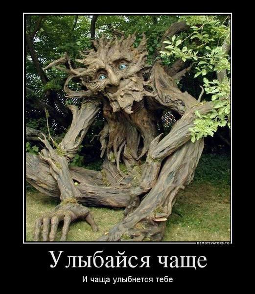 http://images.vfl.ru/ii/1362109658/d50c88b4/1853942.jpg