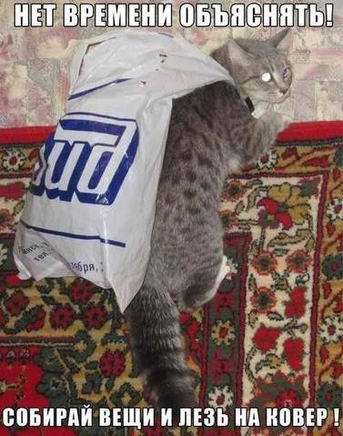 http://images.vfl.ru/ii/1365689225/5a3f173b/2126157_m.jpg