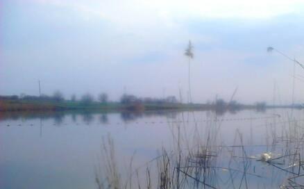 http://images.vfl.ru/ii/1366095984/18f02faa/2157282_m.jpg