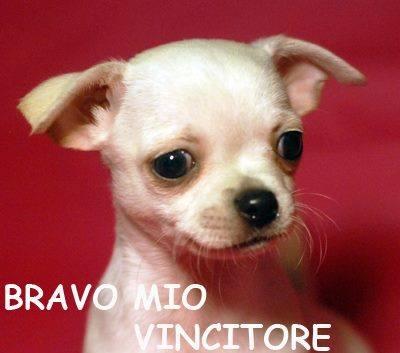 http://images.vfl.ru/ii/1366450059/1c7263fd/2183389_m.jpg