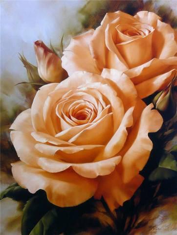 http://images.vfl.ru/ii/1367642188/af4ae179/2273880_m.jpg