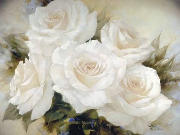 http://images.vfl.ru/ii/1367642483/dae68993/2273909_m.jpg