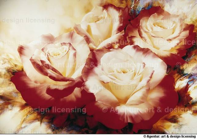 http://images.vfl.ru/ii/1367643755/84c5f2d2/2273974_m.jpg
