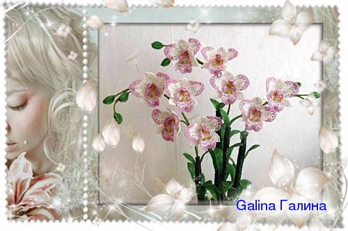 http://images.vfl.ru/ii/1367978597/068b5154/2297526_m.jpg