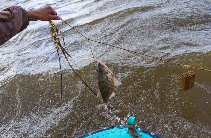 Как сделать перемет и ловить рыбу, не нарушая закон?