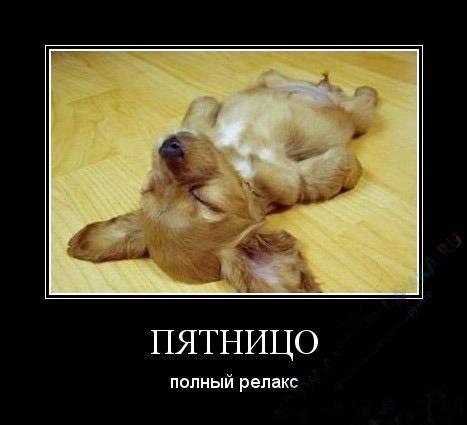 http://images.vfl.ru/ii/1369372809/537836ae/2396959_m.jpg