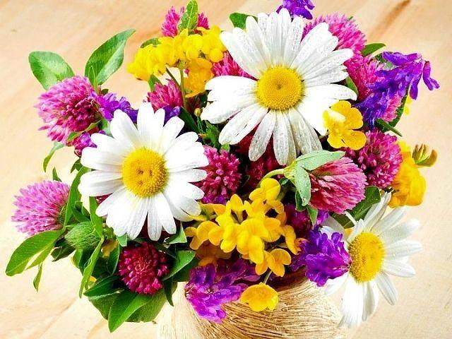 http://images.vfl.ru/ii/1372751691/5b5fc209/2628120.jpg