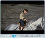 http//images.vfl.ru/ii/1372854136/af0c6f44/26376.jpg