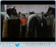 http//images.vfl.ru/ii/1372854147/3803c916/26384.jpg