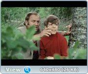 http//images.vfl.ru/ii/1372854159/70a6a6/26397.jpg