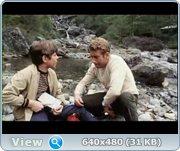 http//images.vfl.ru/ii/1372854172/2b0eec8d/2635807.jpg