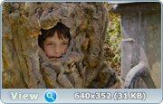 http//images.vfl.ru/ii/1373113251/c200f407/2654045.jpg
