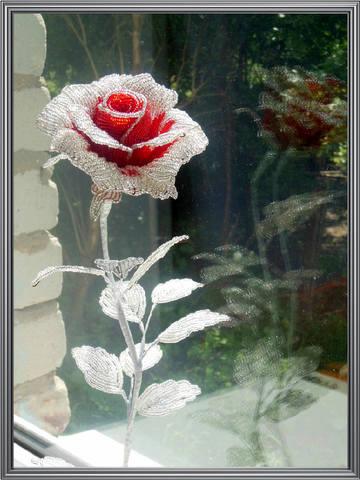 http://images.vfl.ru/ii/1373191651/b9f86f12/2658669_m.jpg