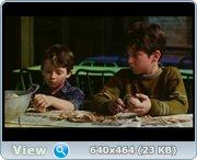 http//images.vfl.ru/ii/13735461/7d34d8b8/2683460.jpg