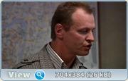 Тульский-Токарев (2010) DVDRip