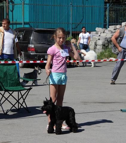 http://images.vfl.ru/ii/1374360336/63817c45/2736633_m.jpg