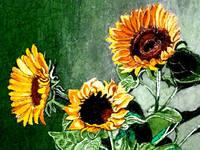 http://images.vfl.ru/ii/1374573112/38344e24/2750885_s.jpg
