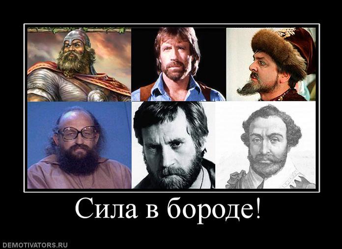 http://images.vfl.ru/ii/1375615983/1edbd29f/2825824.jpg