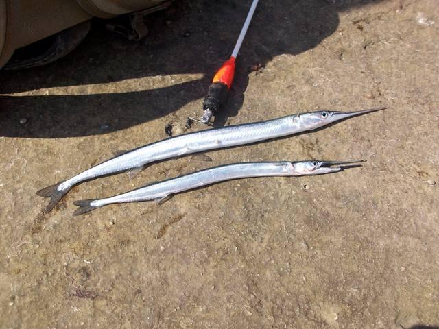 Рыбалка - Страница 12 2871412_m