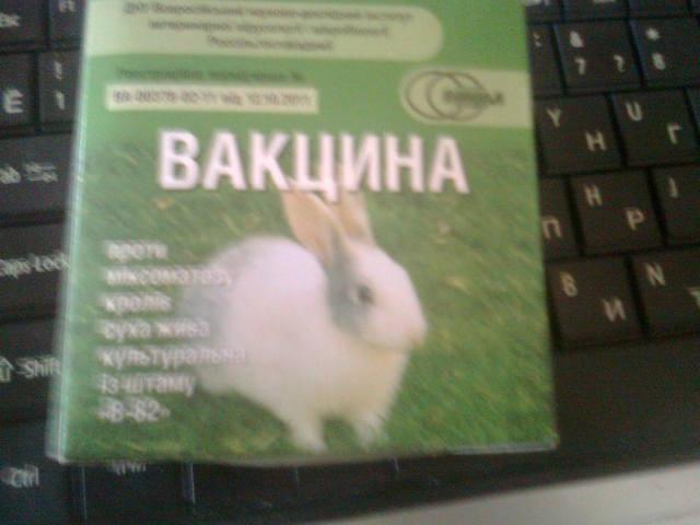 Миксоматоз кроликов. - Страница 3 2875551_m