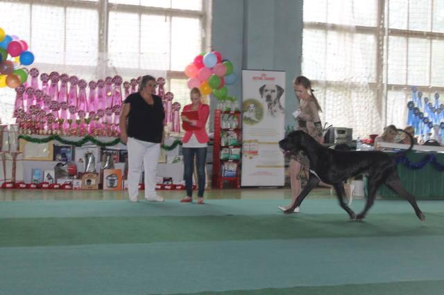 http://images.vfl.ru/ii/1377354805/58247b4c/2958370_m.jpg