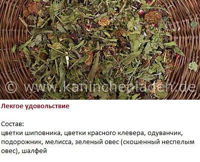 Витамины для кроликов. 3153870_m