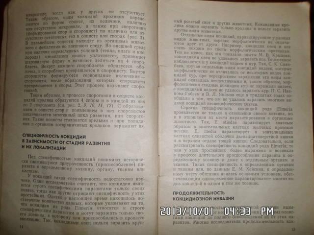 Кокцидиоз кроликов. Н.А.Колабский. 3210163_m