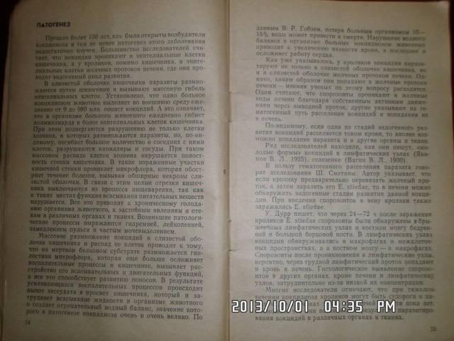 Кокцидиоз кроликов. Н.А.Колабский. 3210180_m