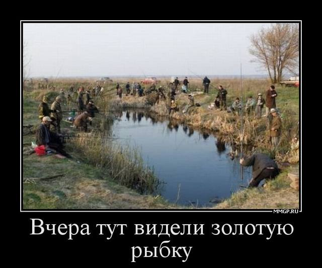рыбалка возле видного