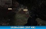 3365609.jpg