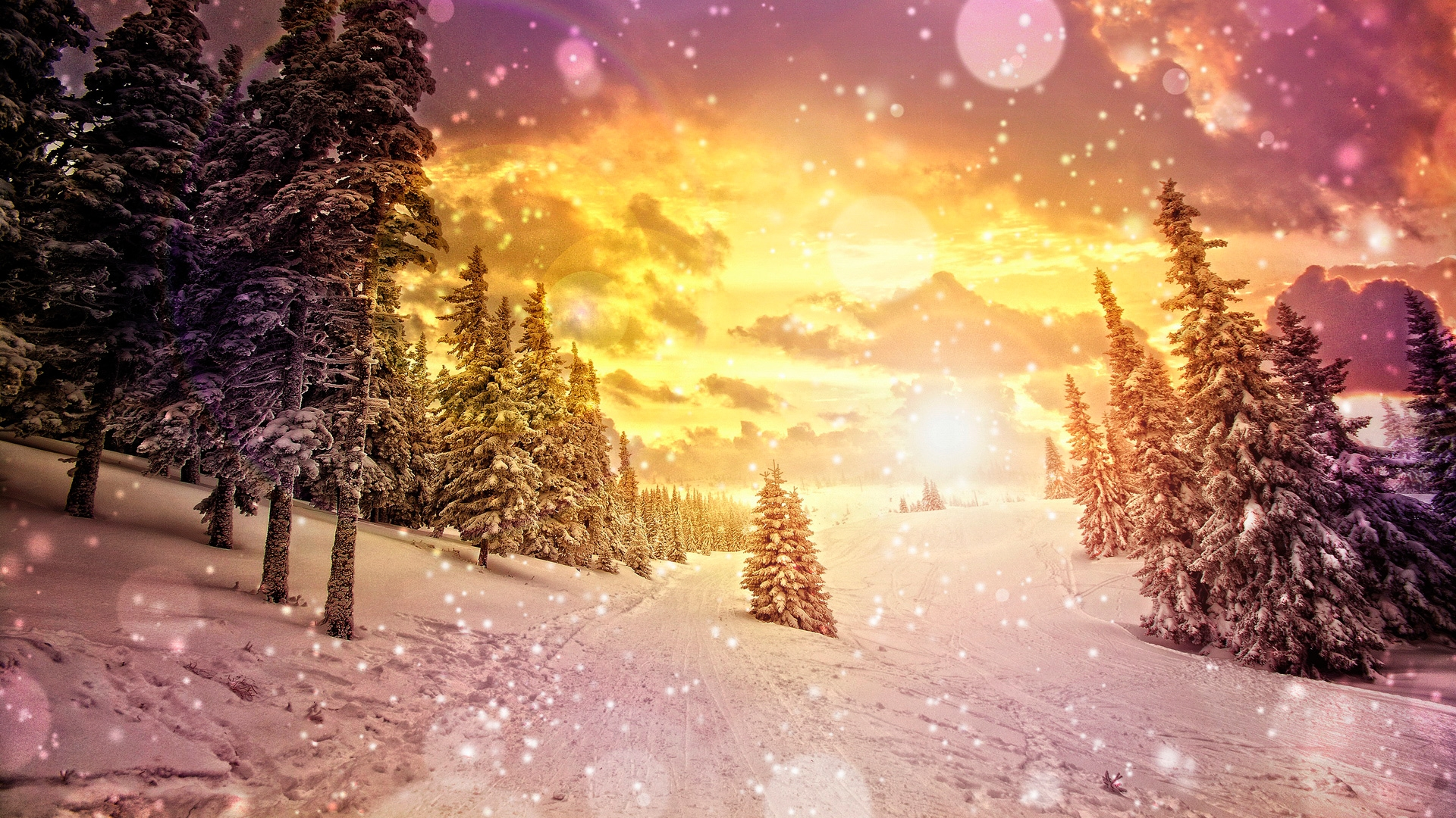 Winter Wallpapers  [2013]