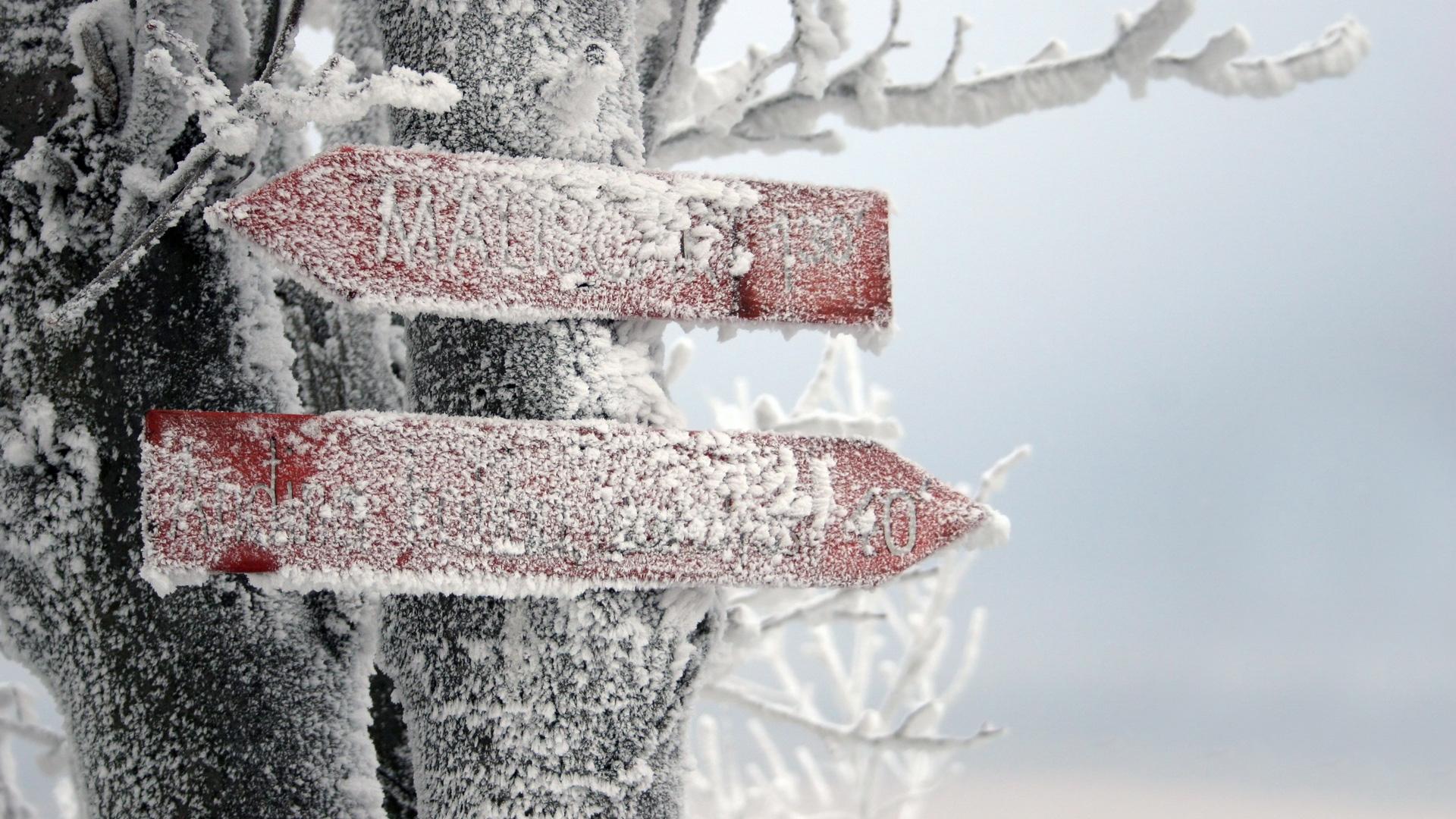 http://images.vfl.ru/ii/1384274127/934040d7/3507958.jpg