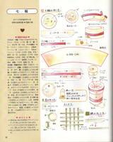 Еда 3510137_s