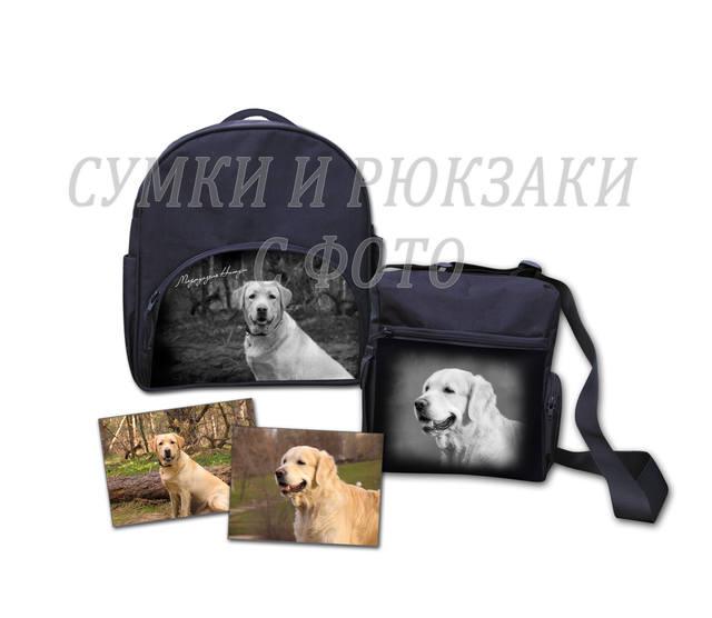 http://images.vfl.ru/ii/1384625163/a0252594/3539921_m.jpg