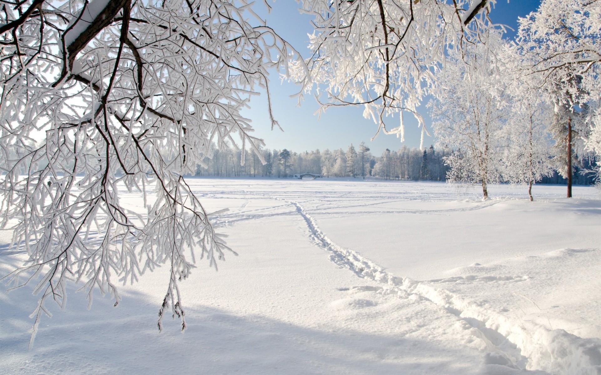http://images.vfl.ru/ii/1385830326/9bdf7f12/3649061.jpg