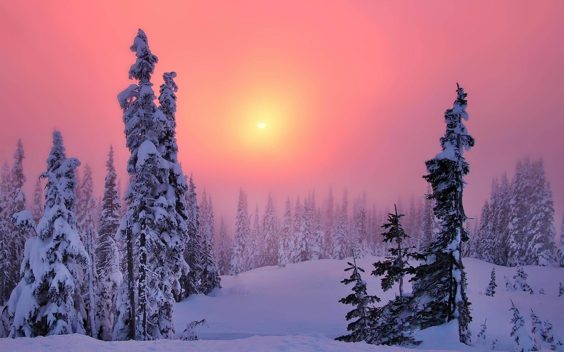 http://images.vfl.ru/ii/1385830363/19f54079/3649071.jpg