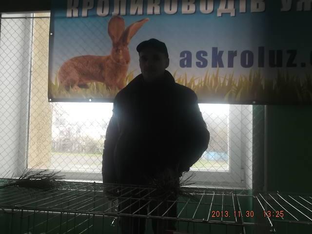 выставка в Ужгороде. - Страница 4 3667140_m
