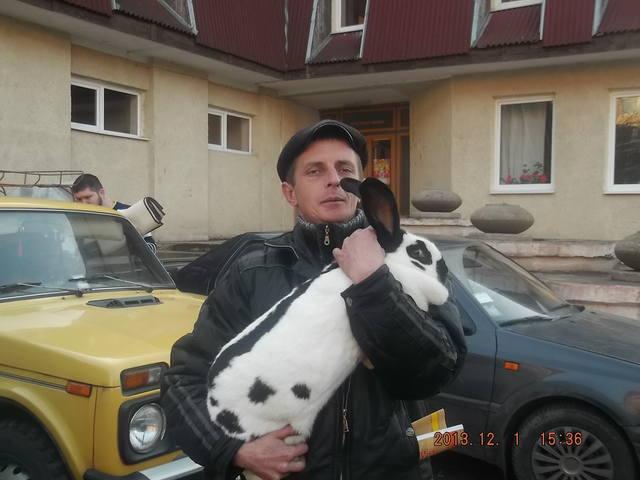 выставка в Ужгороде. - Страница 4 3667211_m
