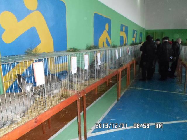 выставка в Ужгороде. - Страница 4 3671857_m