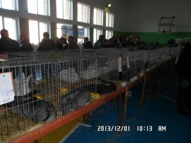 выставка в Ужгороде. - Страница 5 3672197_m