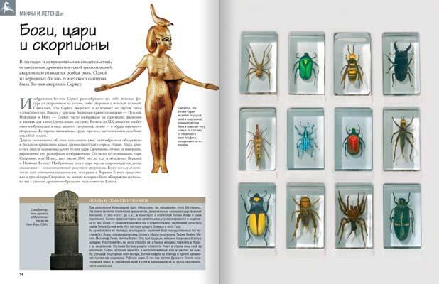насекомые и их знакомые футляр купить