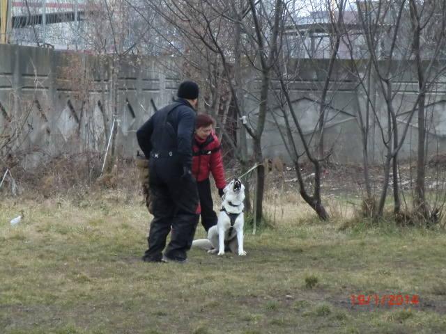 http://images.vfl.ru/ii/1390139913/123e91ef/4021724_m.jpg