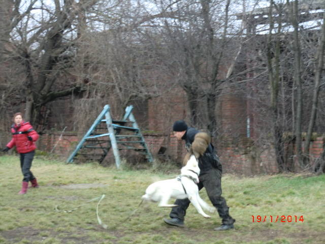 http://images.vfl.ru/ii/1390140205/36eb4b86/4021778_m.jpg