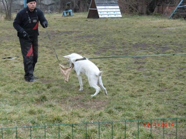 http://images.vfl.ru/ii/1390140722/b58e843e/4021880_m.jpg