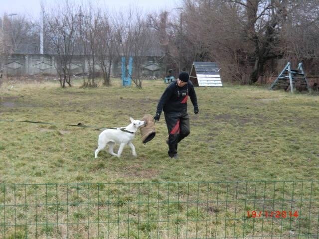 http://images.vfl.ru/ii/1390141106/a9bea0f2/4021967_m.jpg