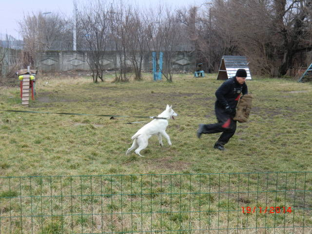 http://images.vfl.ru/ii/1390141107/2ebfd77f/4021968_m.jpg